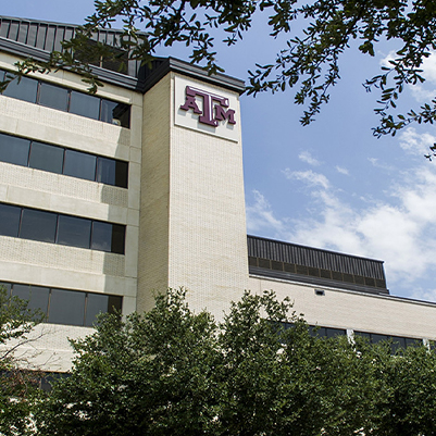 Texas A&M dental school building